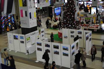 The photo exhibition organized in Sendai Station