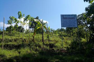The project site planted with local species of seedlings and fruit-bearing trees to improve the area`s biodiversity.